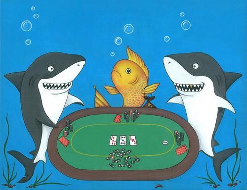 акула покера